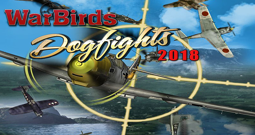 WarBirds Dogfights!